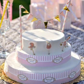 Kuchen-Set Fräulein Rosa