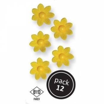 12 Gänseblümchen aus gelbem Zucker