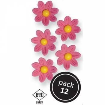 12 Gänseblümchen aus zuckerrosa
