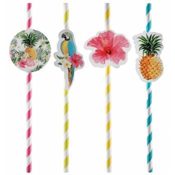 8 Tropical Pailles Paradise