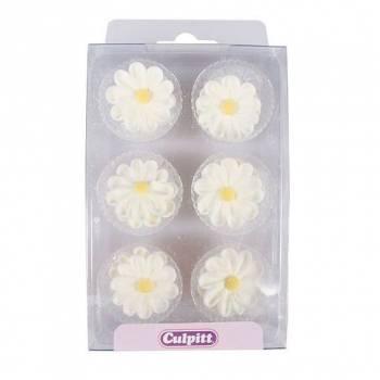 12 Mini-Gänseblümchen aus Zucker