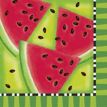 16 Wassermelonetücher