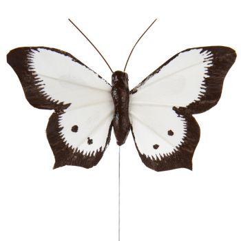 6 zweifarbige Schmetterlinge auf weißem Stiel