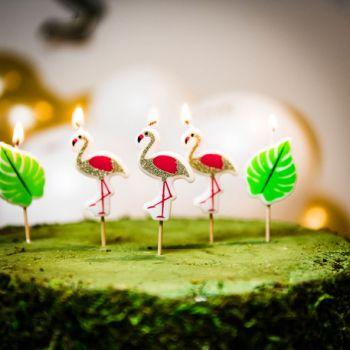 5 Pics Flamingo Glitzerkerzen für Kuchen