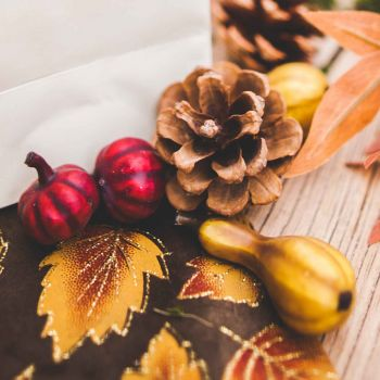 Sortiment Herbst-Dekor Kürbisse und Tannenzapfen