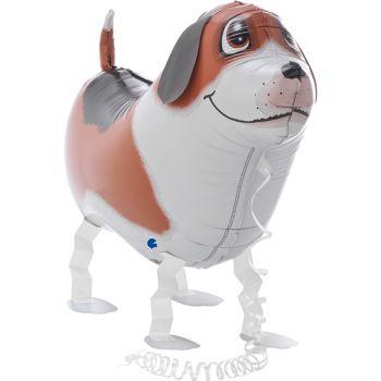 Luftballon Helium Freund Hund