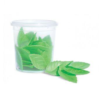 24 Grüne Blätter Scrapcooking