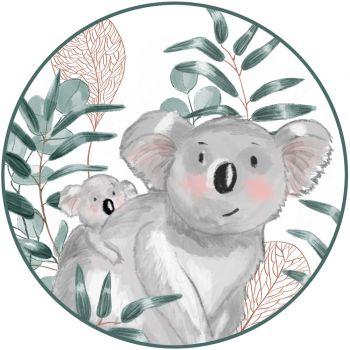 Koala Zucker Scheibe